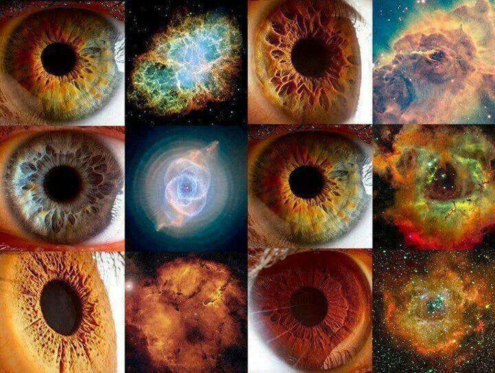 d82bbf479b289426a43f992be849a394-human-eye-human-body