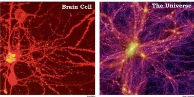 neuron-galaxy3